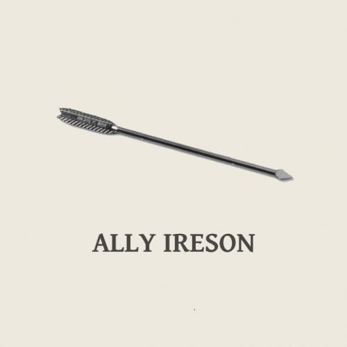 Ally Ireson logo